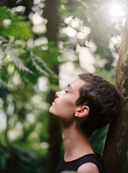 respirer en forêt